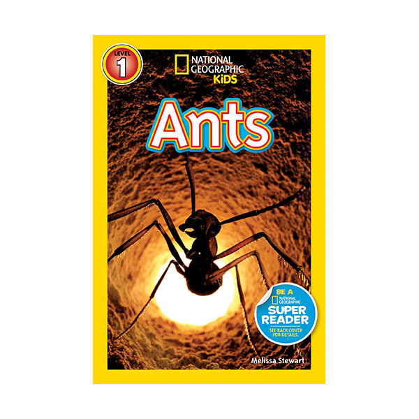 RL 2.5 : National Geographic Kids Readers Level 1 : Ants (Paperback)