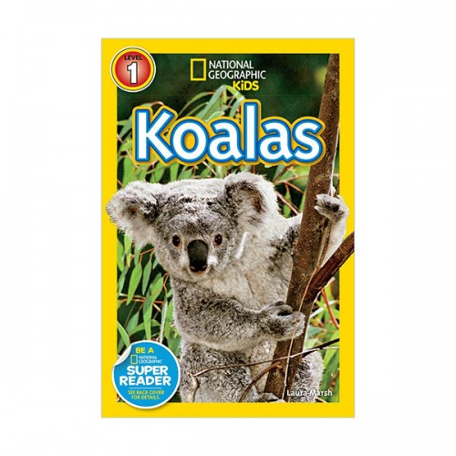 RL 2.9 : National Geographic Kids Readers Level 1 : Koalas (Paperback)