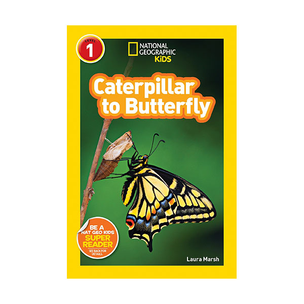 National Geographic Kids Readers Level 1 : Caterpillar to Butterfly (Paperback)