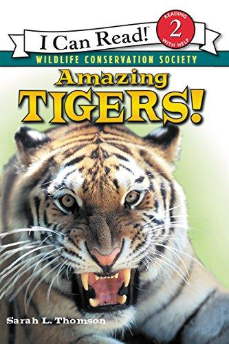 RL 3.2 : I Can Read Level 2 :Amazing Tigers! (Paperback)