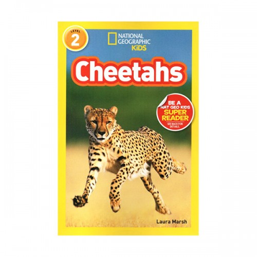 RL 3.4 : National Geographic Kids Readers Level 2 : Cheetahs (Paperback)