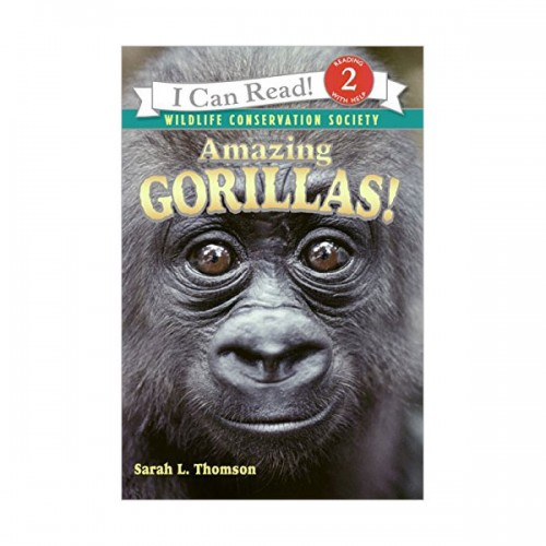 RL 3.5 : I Can Read Level 2 : Amazing Gorillas! (Paperback)