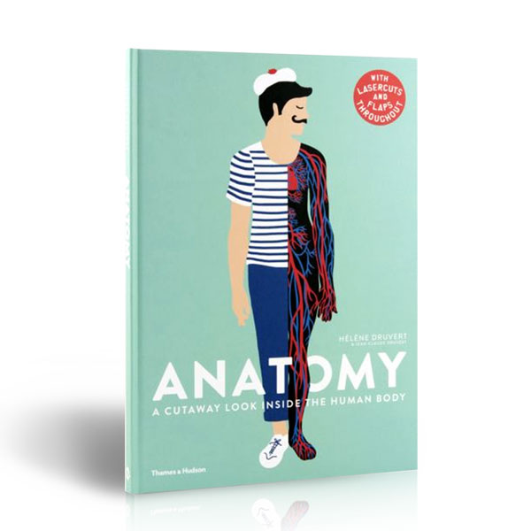 Anatomy : A Cutaway Look Inside the Human Body (Hardcover, 영국판)