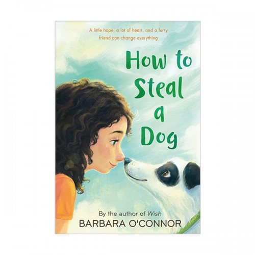 [베스트★] How to Steal a Dog (Paperback)