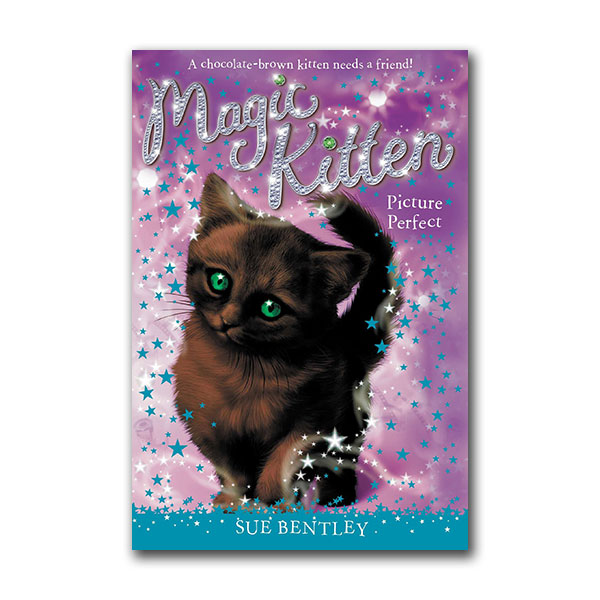 Magic Kitten #13  : Picture Perfect (Paperback)