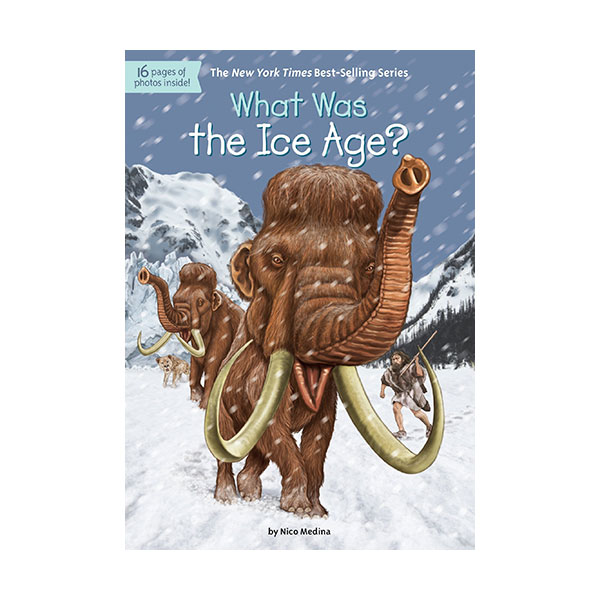 RL 5.6 : What Was the Ice Age? (Paperback)