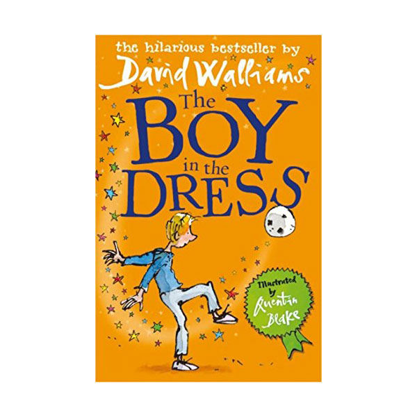The Boy in the Dress (Paperback,영국판)