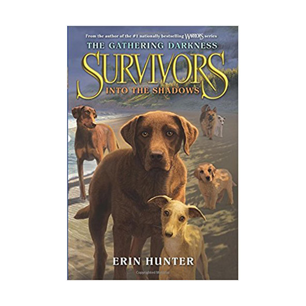 RL 5.5 : Survivors the Gathering Darkness #3 : Into the Shadows (Paperback)