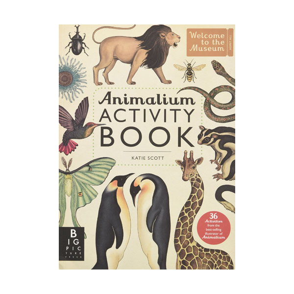 Welcome to the Museum : Animalium Activity Book (Paperback)