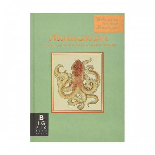 Welcome to the Museum : Animalium - Mini Gift Edition (Hardcover, 영국판)