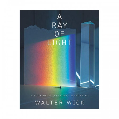 A Ray of Light (Hardcover)
