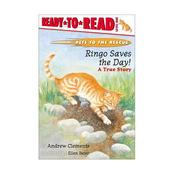 Ready to read 1 : Ringo Saves The Day! (Paperback)