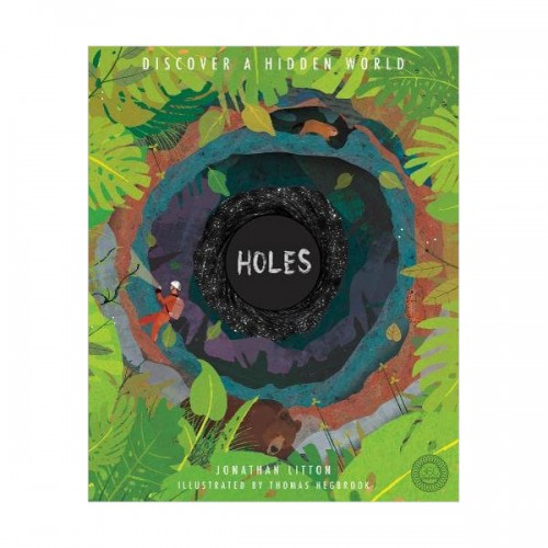 Holes : Discover a Hidden World (Hardcover, 영국판)