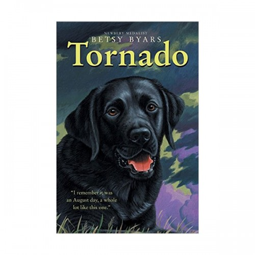 Trophy Chapter Books : Tornado (Paperback)