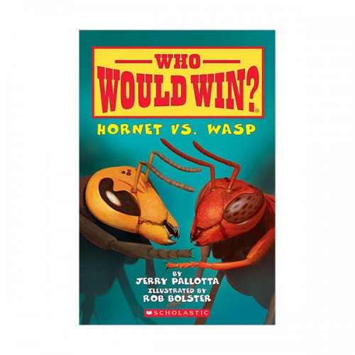 Who Would Win? : Hornet vs. Wasp (Paperback)